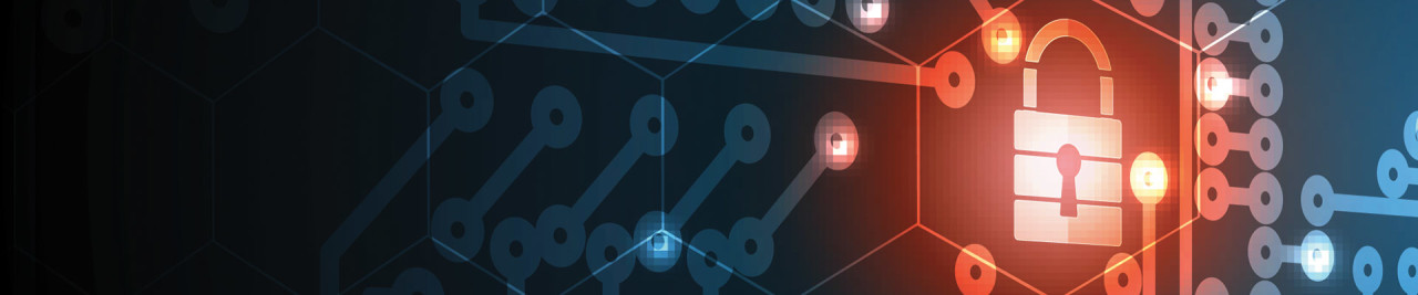 Vulnerabilities in ASP.NET Web Applications